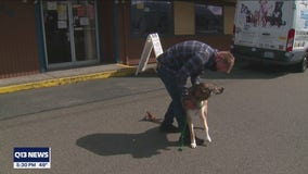 Portland man reunited with dog that was adopted out while he was in Auburn hospital