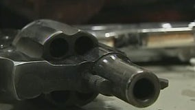Second Amendment doesn't give the right to carry guns in public, US appeals court says
