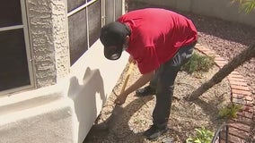 As scorpion season nears, Arizona business creates repellent for homes