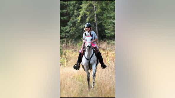 $5,000 reward offered for horse lost in Wickenburg
