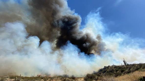 50-acre Pumpkin Fire burning near Tonto Basin closes roads, prompts evacuations