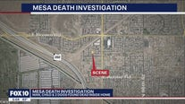 Man, child, 2 dogs found dead inside Mesa home