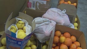 St. Mary's Food Bank puts out last call for citrus fruit donations