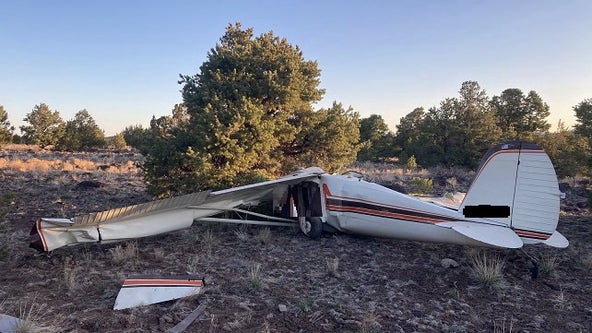 2 dead in plane crash near Williams airport