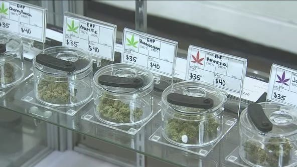Clearing marijuana convictions: Phoenix event offers free legal help to expunge record