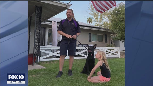 The ride of her life: Escaped dog in Scottsdale spends morning in FedEx truck