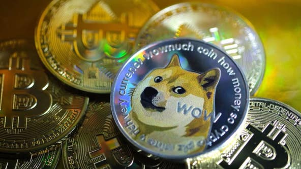 Anonymous donor uses 'Dogecoin' earnings to pay adoption fees at Daytona shelter