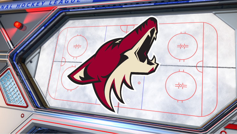 arizona coyotes hockey