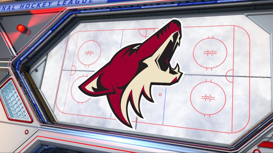 arizona coyotes hockey