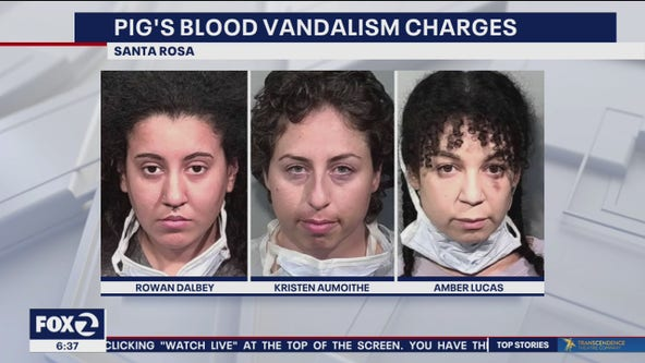 3 women arrested after pig's blood strewn on Chauvin defense witness old home