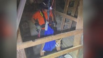 Mohave County rescuers recover dog that fell down mine shaft
