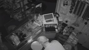 Business owner's 2 hair salons broken into, police searching for suspect
