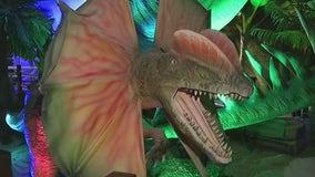 Pangea Land of the Dinosaurs