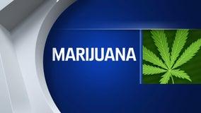 Arizona marijuana sales slated to bring in $1.5 billion in state taxes