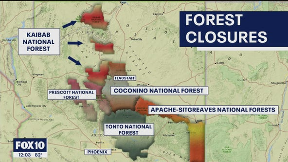 Several national forests closing due to wildfire activity