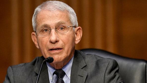 Rep. Marjorie Taylor Greene, House Republicans introduce legislation to oust Fauci