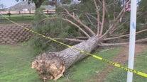 Weekend monsoon weather left trail of destruction in Phoenix area