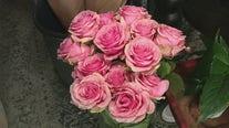 North Phoenix florist offers BYOB flower arranging classes