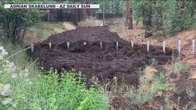 Arizona Gov. Ducey issues emergency declaration due to flash floods in Flagstaff area