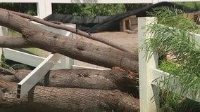 Monsoon weather wreaks havoc in Queen Creek neighborhoods, damages animal rescue