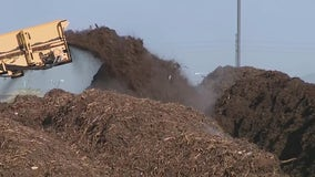 Going green: Phoenix program turns yard waste into compost