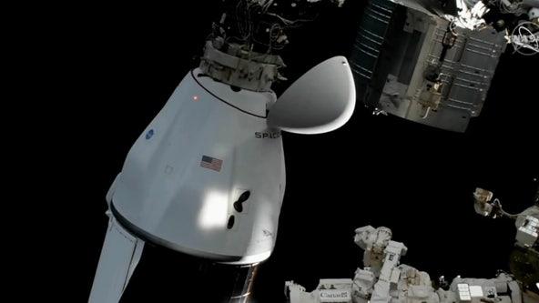 SpaceX Dragon cargo capsule splashes down off coast of Florida