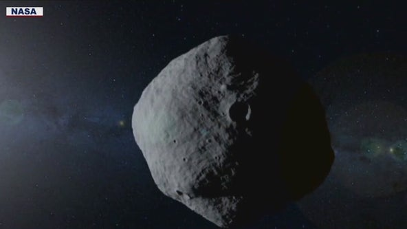 UArizona professor tapped by NASA to lead Near-Earth Object tracking project
