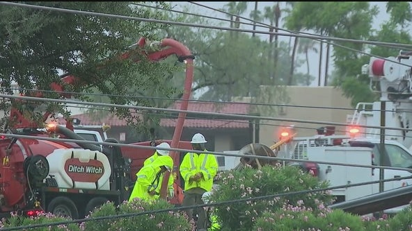 Monsoon storm causes trees and pole lines to fall in Scottsdale