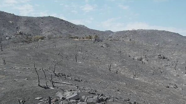Wildfire losses mount as Arizona ranks top in terms of acres burned