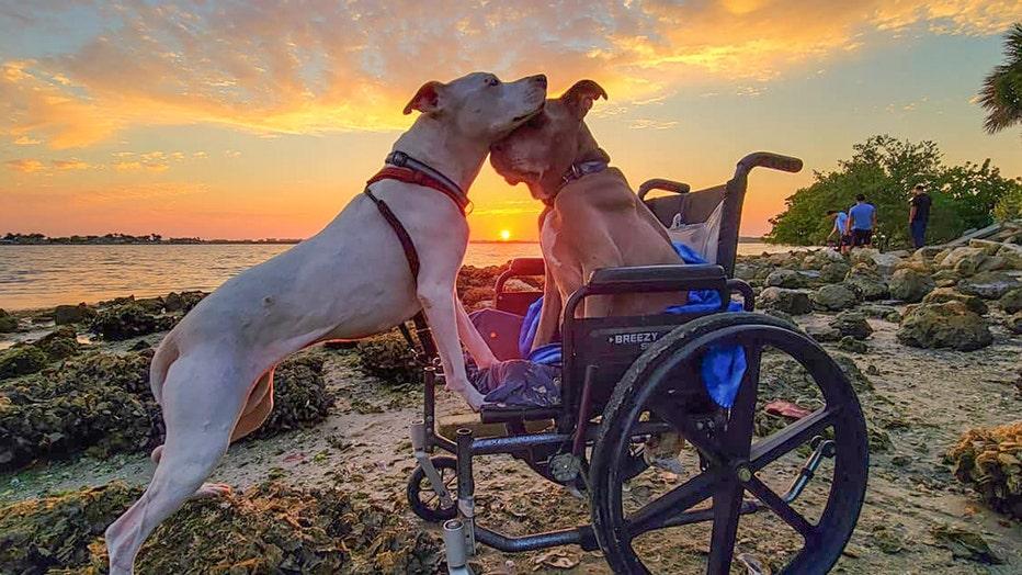 great-new-sunset-shot.jpeg