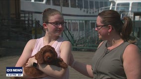 Seattle teen with Type 1 diabetes surprised with diabetic alert service dog