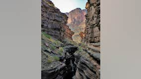 Oregon man dies after falling 50 feet while hiking in Grand Canyon