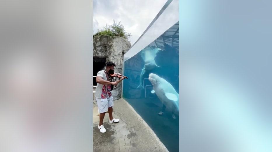 Screen Shot 2021-08-04 at 3.18.59 PM