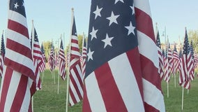 A sea of flags: More than 3,000 flags placed on Tempe Beach Park to honor 9/11 victims