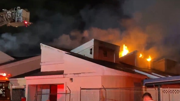 20 to 30 cats feared dead after fire at Pet Alliance of Greater Orlando