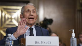 Fauci OKs trick-or-treating this Halloween