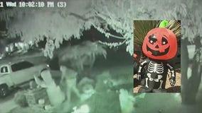 'It's pretty sad': Halloween decoration vandals strike north Phoenix neighborhood