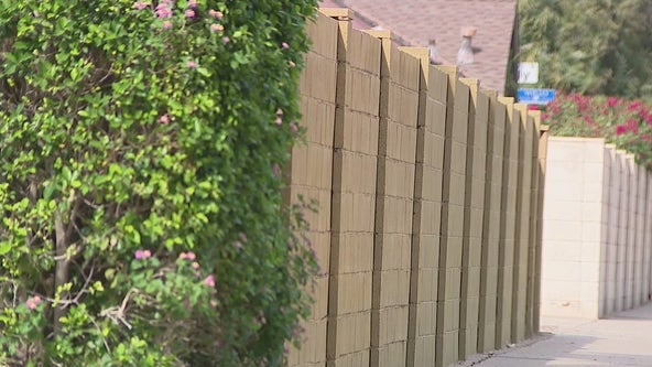 Residents in Phoenix's Willo Historic District facing fines for walls higher than 6 feet
