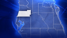 Primary election results: Pasco County