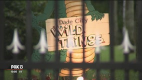 Owner of Dade City's Wild Things zoo accused of fraud