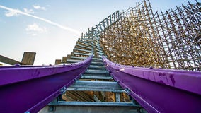 Purple preview: Busch Gardens' new coaster on Gwazi site goes vertical