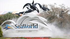 After furloughing 95% of workers, SeaWorld seeks federal loan