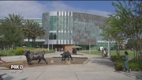 USF makes list of top 50 public universities