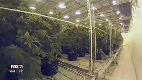 Marijuana facility planned for warehouse next to rehab clinic