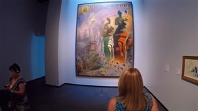 Art lovers can find beautiful masterpieces in downtown St. Pete
