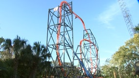 Thrill seekers prepare: Florida's tallest launch roller coaster, Tigris, is almost ready