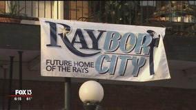 Rays 2020 forms committee to bring baseball to Tampa
