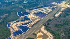 Disney's massive new solar facility can power 2 theme parks