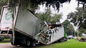 Publix truck nearly cut in half by falling tree
