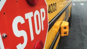 When do you have to stop for a school bus in Florida?